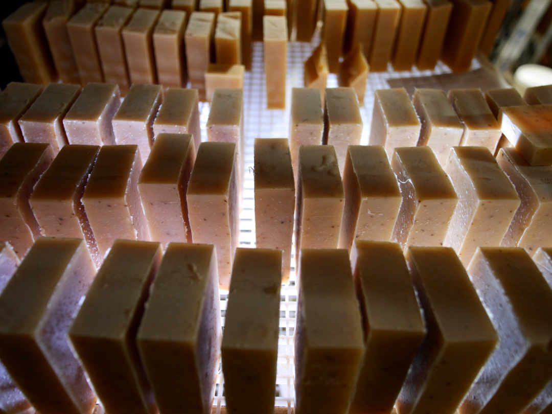 soap bars curing on drying rack